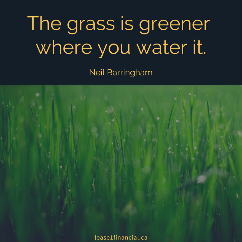 The grass is greener where you water it. Neil Barringham
